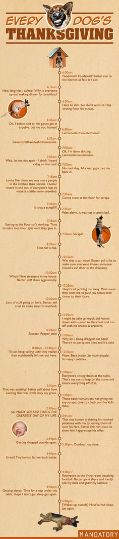 Dog's Thanksgiving timeline -- this was absolutely hilarious... and SPOT ON.