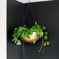 We firmly believe that gold spray paint can solve almost anything, and this metallic hanging planter is Exhibit A. To create this golden globe, Brittany Goldwyn drilled through a stainless steel bowl from IKEA, before painting it and suspending it from the ceiling.