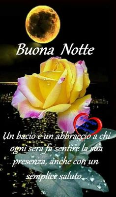 Good Night I Love You, Good Morning Good Night, Italian Greetings, Sarah Kay, Dolce, Anna, Pictures Of Flowers, Happy Brithday, Good Night