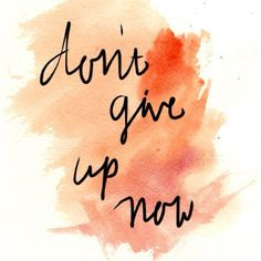 Don't give up /