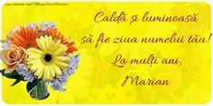 Felicitari de Ziua Numelui - Caldă și luminoasă să fie ziua numelui tău! La mulți ani, Marian Poster, 3, Mariana, Birthday Cards, Billboard