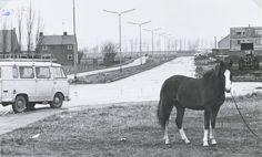 Een gedeelte van de Galgenweg 1971