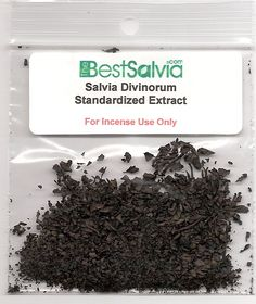 Find the highest quality of salvia 20x with standardized extraction techniques.