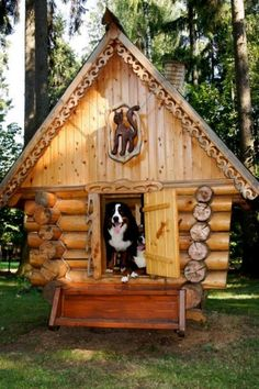 This looks like a log cabin dog house, but it has cat carving at the top. I wonder if the cat knows he has visitors? #puppied