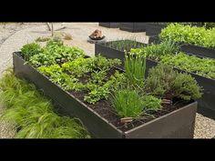 Jak Zrobić Ogród Warzywny Gardening, Plants, Youtube, House, Home, Lawn And Garden, Plant, Youtubers, Homes