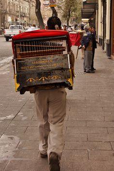Organilleros en la Ciudad de México estan desapareciendo...