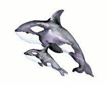 Orque/Orca aquarelle mère et bébé Print-11 X 14