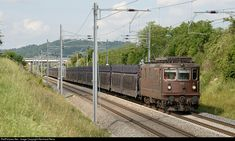 High quality photograph of BLS Cargo BLS Re # 425 168 at Jestetten, Germany. Reiss, Locomotive, Germany, Deutsch, Locs