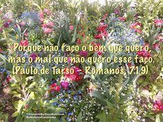 """""""Porque não faço o bem que quero, mas o mal que não quero esse faço."""" (Paulo de Tarso – Romanos, 7:19)"""