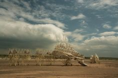 The Animaris Percipiere Primus and another Strandbeest on the beach (Photo: Theo Jansen)