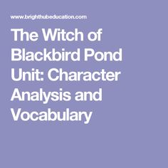 The Witch of Blackbird Pond Unit: Character Analysis and Vocabulary
