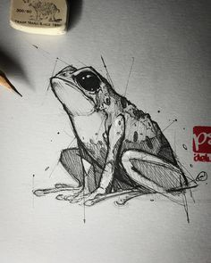 Psdelux is a pencil sketch artist based in Tatabánya, Hungary. He usually draws animal sketches. Psdelux also makes digital drawings. Pencil Art Drawings, Art Drawings Sketches, Cool Drawings, Dress Sketches, Disney Drawings, Animal Sketches, Animal Drawings, Drawing Artist, Painting & Drawing