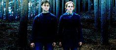 Olvida a los chicos. Hermione debería haberse quedado con Hermione.