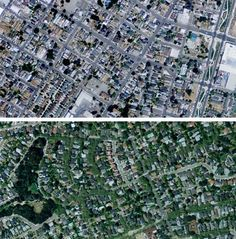 You can identify poor urban neighborhoods from the air based on how few trees they have.