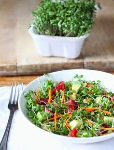 Microgreens are packed with top-notch vitamins, minerals, and phytonutrients. Get this homegrown microgreens salad recipe at PBS Food. Raw Food Recipes, Salad Recipes, Vegetarian Recipes, Cooking Recipes, Healthy Recipes, Kitchen Vignettes, Pbs Food, Clean Eating, Healthy Eating