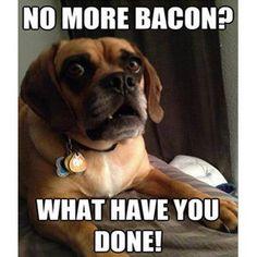 no more bacon?