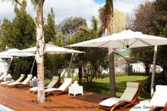 Relax at the pool at The Robertson Small Hotel.  Robertson accommodation. Accommodation in Robertson. The Robertson Small Hotel accommodation.