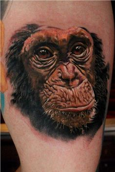 Chimp Tattoo By Nino http://www.vividinkbirmingham.co.uk/index.php/artists/nino