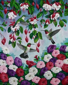 Hummingbirds, fuchsias, and petunias. Painting by Crista Forest