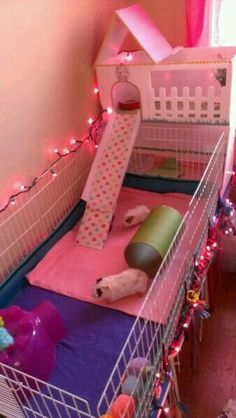 Great cage for guniea pigs. I would be concerned with being an open concept like this though. :)