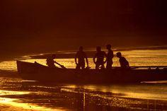 'rowers, mooloolaba beach'