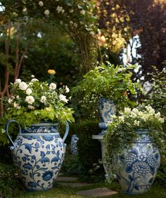 All About Container Gardening - Urban Gardening Blue And White China, Blue China, Container Plants, Container Gardening, Chinoiserie, Beautiful Gardens, Beautiful Flowers, Garden Urns, White Vases