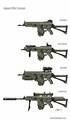 Rifle de asalto versiones