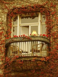 Ivy Balcony, Paris, France  photo via lostinthe