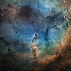 The Elephant's Trunk in IC 1396  Image Credit & Copyright: J.C. Canonne, P. Bernhard, D. Chaplain & L. Bourgon