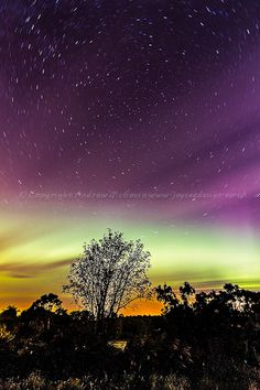Aurora startrails - Rafford, Scotland (copyright: Andrew McGavin)