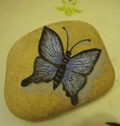 Painted butterfly on stone