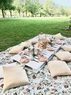 Park Birthday, Picnic Birthday, 16th Birthday, Birthday Ideas, Picnic Party Decorations, Picnic Parties, Brunch Party, Picnic Theme, Picnic Style