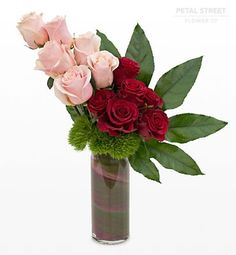 One dozen red and pink Roses arranged in a vase with Green Trick and a large exotic leaf.