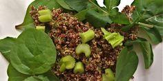 Meatless Monday: Kosher Vegan & Quinoa With Mint Pesto and Spring Greens Recipe