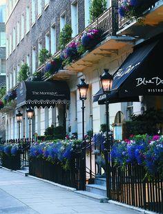 163 best hotels in london england images london london hotels 4 rh pinterest com