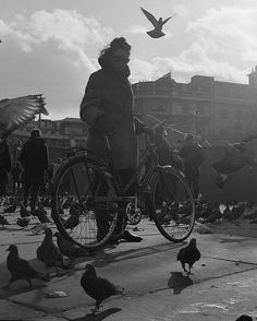 Trafalgar Square, 1968. The great grandparents of pigeons you can see there today.