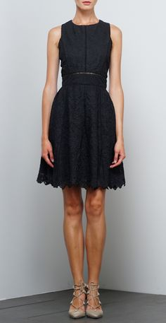Woven Mesh Embroidered Fit and Flare Dress