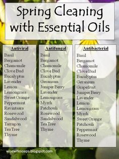 Spring Cleaning with Essential Oils | The Wise Wife