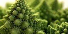 Image result for geometry nature