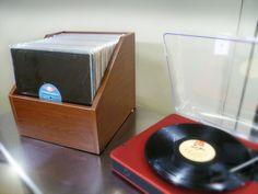 Bin-e LP Storage from www.LPBIN.com