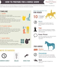 Free infographic: How To Prepare For A Horse Show