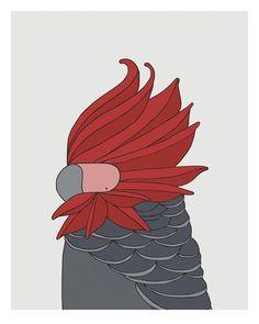 Gang Gang Cockatoo Giclee print  - bird art by Australian graphic designers Eggpicnic.