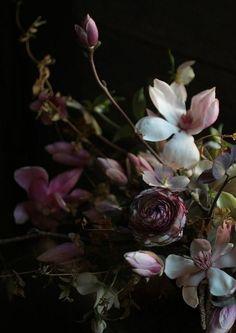 #winter florals...