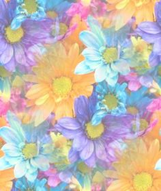lily flower pastel artwork | ... home pastel colors soft pastel flowers strewn all over years