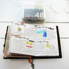 I've been catching up with my journal pages #journal #bulletjournal #tn