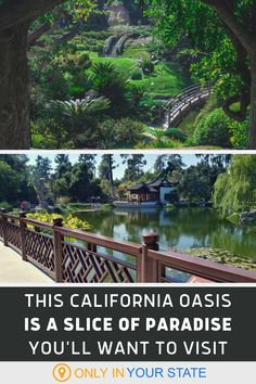 Travel to Southern California and you'll find The Huntington Library, Art Museum, and beautiful Botanical Gardens. A local gem with ponds and walking paths, they now offer special evening strolls. | Things To Do | Local Travel | Vacation Destinations | Photoshoot Locations Near Los Angeles | Day Trips With Family And Friends Us Road Trip, Road Trip Hacks, California Kids, Southern California, Road Trip Destinations, Vacation Trips, Los Angeles Day Trips, Places To Travel, Places To Visit