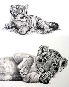Baby Tiger Tattoo Design