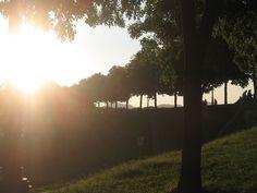 Le mura di #Lucca dietro S. Frediano - sera assolata di metà settembre 2014.