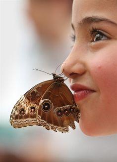 .  #butterfly #kelebek #fly #papillon #Schmetterling #mariposa #farfalla
