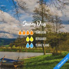 Sunny Day - Essential Oil Diffuser Blend Get #doTERRA oils here: http://mydoterra.com/elizabethbulfer